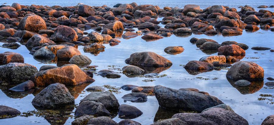 20150726_Newfoundland_0020