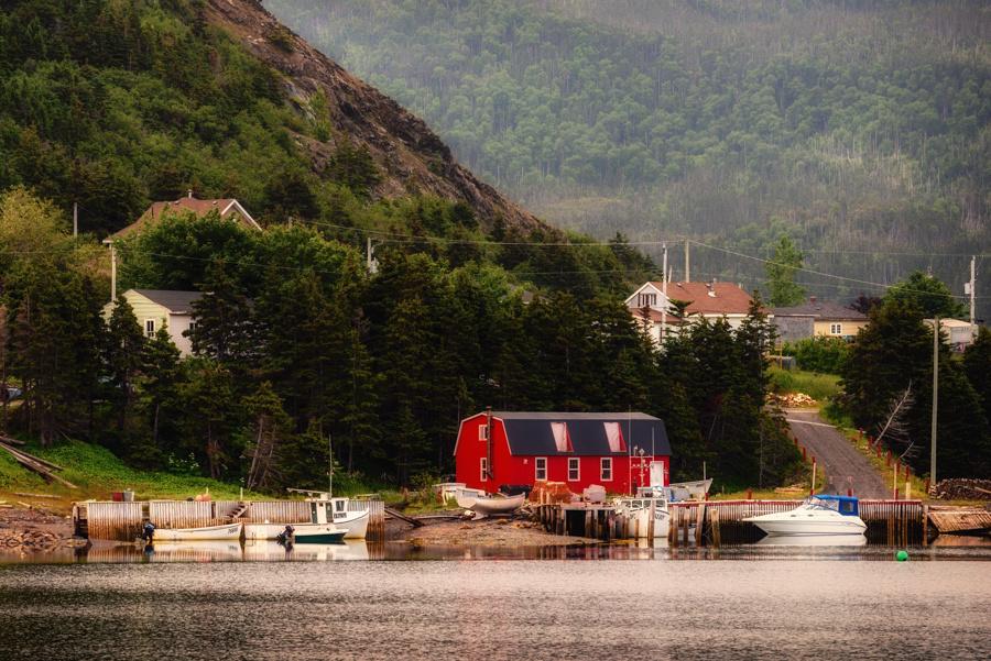 20150730_Newfoundland_0008
