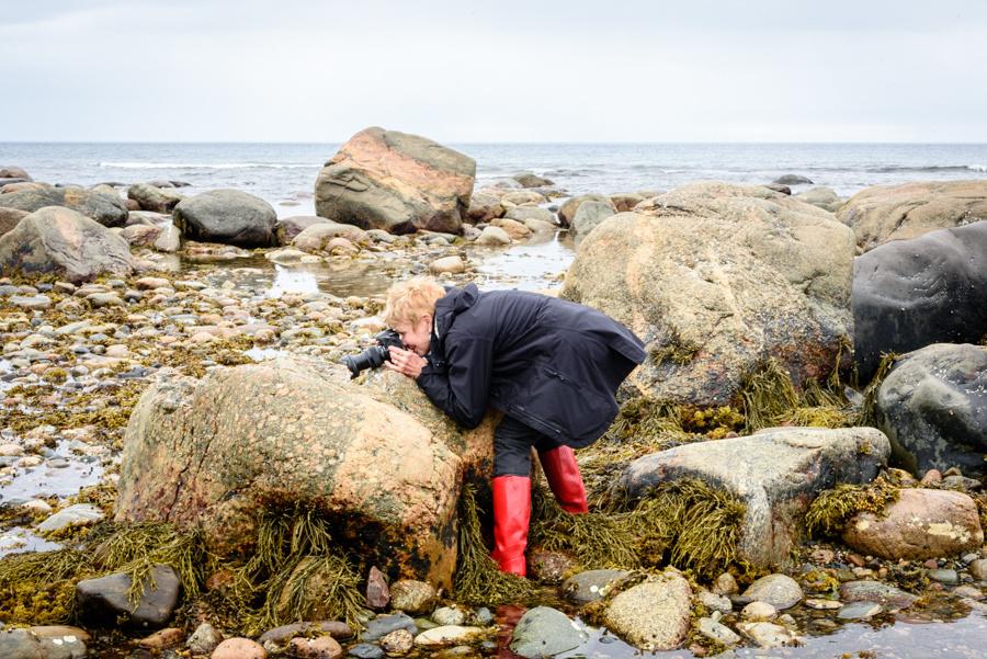 20150729_Newfoundland_0001