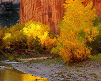 Color in Canyon De Chelly, Marsha Fouks